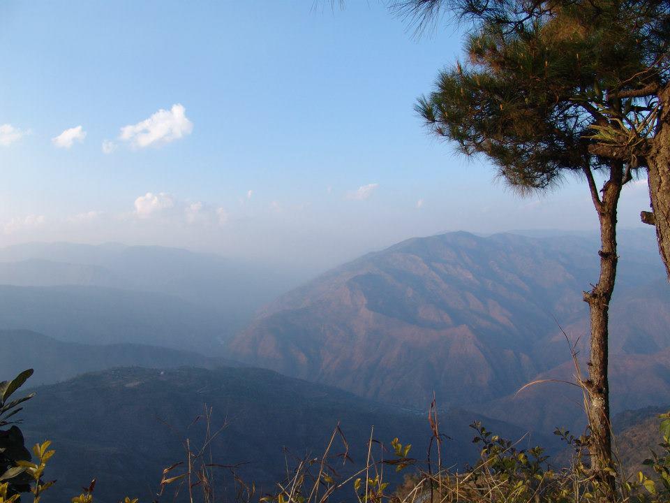 Park Narodowy Mount Victoria. Fot. Życie w tropikach